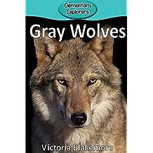 Gray Wolves (Elementary Explorers)