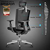ANGEL QUEEN Mesh High Back Extra Thicker Padded Swivel Office Chair with Arm Rests Height Adjustable and Head Support 3 Adjustable Tilt Tension