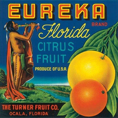 EUREKA FLORIDA CITRUS FRUIT USA INDIAN CRATE LABEL PRINT REPRODUCTION