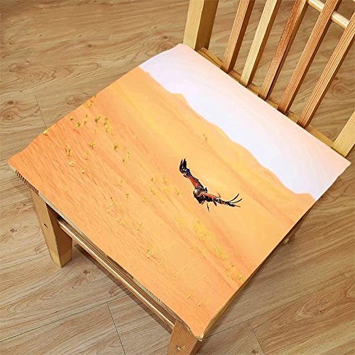 Nalahome Set of 2 Waterproof Cozy Seat Protector Cushion Nature Decor Harris Hawk Fying over Dunes in Dubai Desert and the Sky Digital Image Apricot and Peach Printing Size - Sunglasses Dubai In