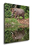 Ashley Canvas Thai Elephant He Is Going To Drink The Water In The Lake, Wall Art Home Decor, Ready to Hang, Color, 20x16, AG5260600