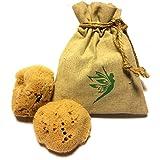 IntimateCare Sea Sponges - 2 Pack - Reusable - PLASTIC-FREE Packaging
