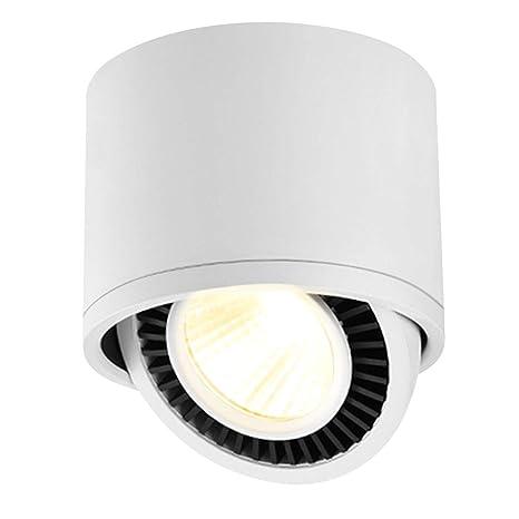 Budbuddy 15W Plafón con Focos LED Focos de techo Orientable Focos para el techo Industrial giratoria 365 Degrees foco superficie regulable Salón ...