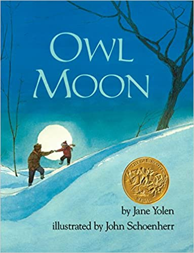 Image result for owl moon book