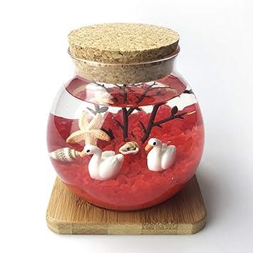 LSHUAIDJ Acuario DIY pecera Felicidad Micro Paisaje Botella ecológica DIY Planta hidropónica Oficina Creativa Conjunto pecera Luminosa-Red: Amazon.es: Hogar