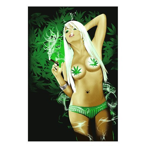 Brand New! 5 Pounds! Weed Girl Soft Korean Style Mink Blanket (Weed Girl)
