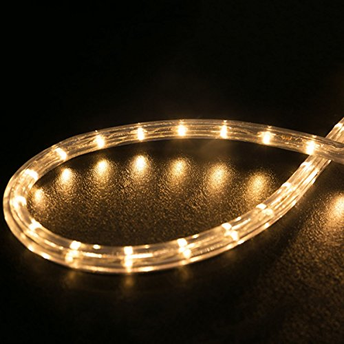 WYZworks 100 feet 1/2'' Thick WARM WHITE Pre-Assembled LED Rope Lights with 10', 25', 50', 150' option - Christmas Holiday Decoration Lighting | UL Certified by WYZworks (Image #4)