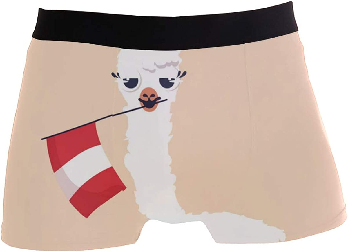 SUABO Mens 2-Pack Boxer Briefs Polyester Underwear Trunk Underwear with Llama with Flag Design