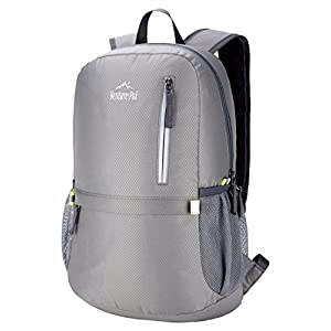 Venture Pal 25L Travel Backpack - Durable Packable Lightweight Small Backpack for Women Men (Grey)