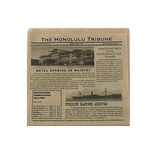 G.E.T. Enterprises 4-T6000 7'' x 7'' Hawaii Newsprint Double Open Bag 2000/QTY, Brown Honolulu Newsprint (Pack of 2000) by GET