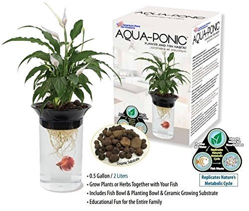 [Aquaponic Fish Tank Aquarium for Betta Fish & Gold Fish with Water Garden Planter Top Lid] (Habitats Classroom)