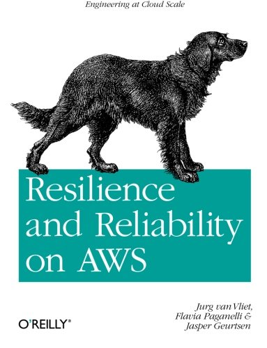 Price comparison product image Resilience and Reliability on AWS: Engineering at Cloud Scale