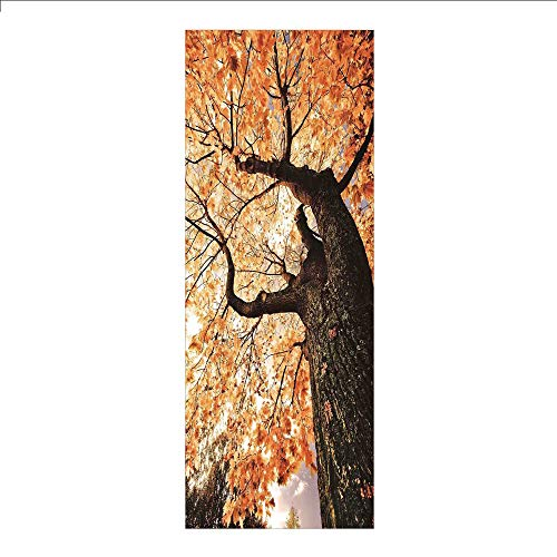 3D Decorative Film Privacy Window Film No Glue,Forest Home Decor,Body of Old Tree Seedling Botany Woodsy Roots Falling Maple Leaf Design,Orange Brown,for Home&Office