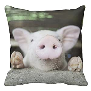 HSArtStore Baby Pig In Pen Cotton linen decorative pillow pad cover square box 18 x 18 inch