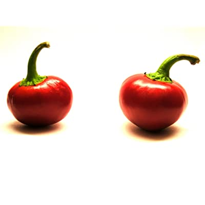 Red Cherry Bomb Hot Chili Pepper Seeds 50 PCS : Garden & Outdoor