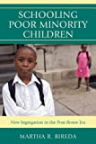 Schooling Poor Minority Children, Martha Bireda, 1607098822