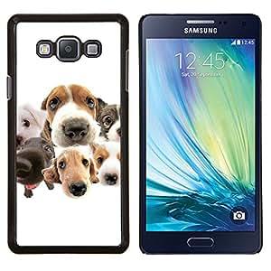 TECHCASE---Cubierta de la caja de protección para la piel dura ** Samsung Galaxy A7 ( A7000 ) ** --Beagle Labrador Retriever Perros Raza