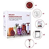 Fermentation Kit for Wide Mouth Mason Jars, 4 Glass Weights+ 4 Lids+1 Pump+ 6 Ferment Record Labels+ Recipe Book