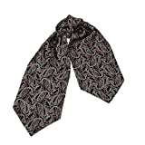ERA7B05 Classic Present Silk Ascot Patterned Mens Cravat for Designer By Epoint