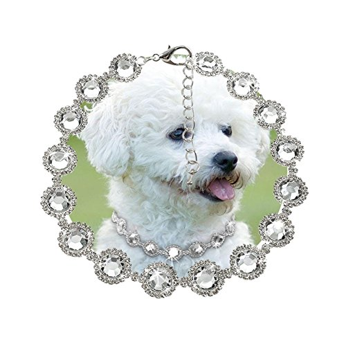 Stock Show Pet Cute Rhinestone Collar Necklace Dogs BlingBling Diamond Necklaces Dog Cat Fancy Princess Wedding Style Collar for Small Pets Cats Kitten Puppy, White ()