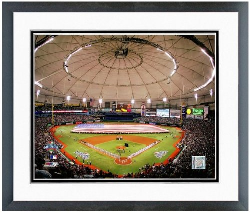 MLB Tropicana Field Tampa Bay Rays Stadium Photo (Size: 12.5