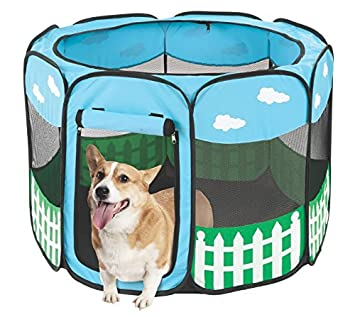 Pet Portable Foldable Play Pen Exercise Kennel Dogs Cats Indoor/outdoor tent for small medium  sc 1 st  Amazon.com & Amazon.com : Pet Portable Foldable Play Pen Exercise Kennel Dogs ...