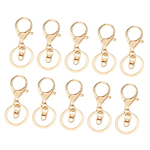 Pack of 10 RZDEAL Keyring D-Ring Lobster Clasps Connectors Clips Hooks for Handbag Purse Bag Luggage Car House Key Ring DIY Craft
