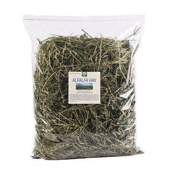 Small Pet Select 12oz Alfalfa Hay by Small Pet Select
