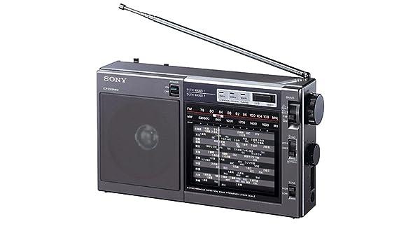 SONY Portable Radio ICF-EX5MK2 FM AM Nikkei Analog Tunning + Carry Belt Japan250 (japan import): Amazon.es: Hogar