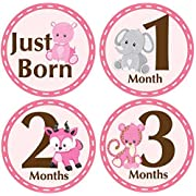 Belly Doodles 16 Baby Month Stickers Safari Animals Pink