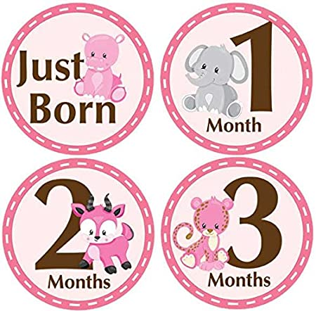 24 Newborn Baby Floral Milestone Stickers Celebrate 0-12 Months and more