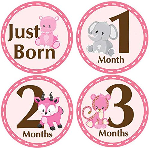 Month Card (Belly Doodles 16 Baby Month Stickers Safari Animals Pink)