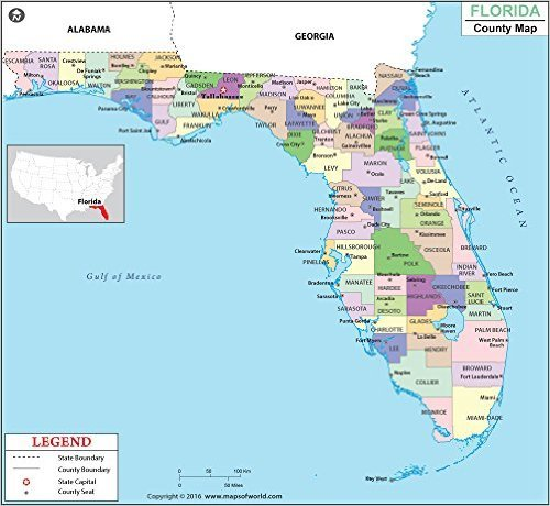 Amazon.com : Florida County Map : Office Products