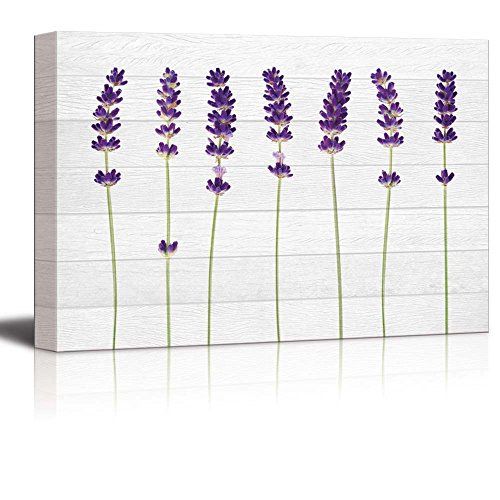 Purple Perennial Flowers Over White Wood Panels