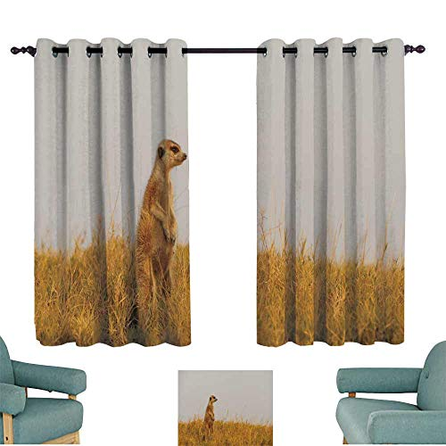 WinfreyDecor Breathable Curtain Meerkat in The Open Field Noise Reducing 63