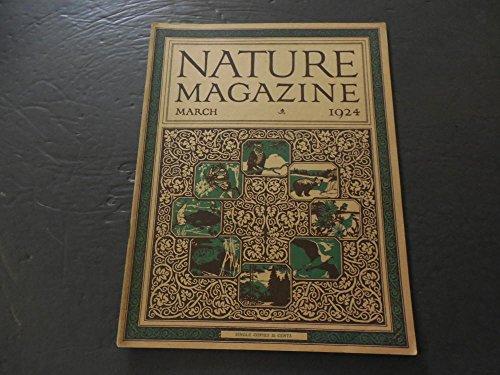 Nature Mar 1924 Dinty, A Pet Porcupine (No, Really)