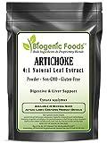 Artichoke - 4:1 Natural Leaf Extract Powder (Cynara scolymus), 10 kg