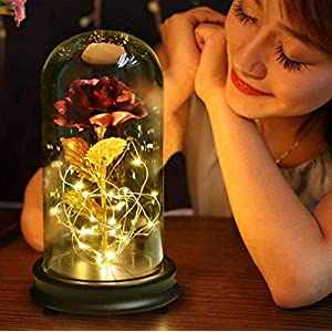 NOMSOCR Beauty and The Beast Rose, Gold-Plated Red Artificial Silk Rose and LED String Light with Fallen Petals in Glass Dome for Wedding Anniversary Birthday Party 59
