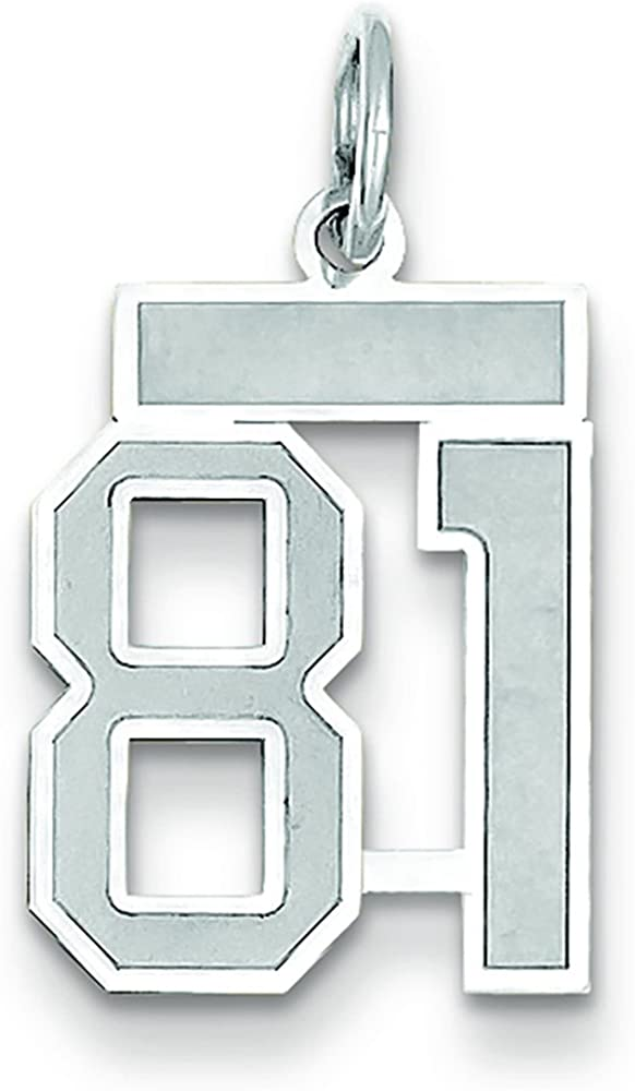 14k White Gold Small Satin Number 96 Charm