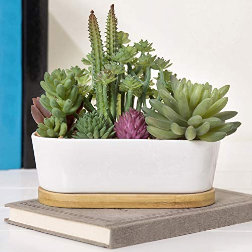 MyGift 6-Inch Assorted Faux Succulent Plants in Oval White Ceramic Pot & Bamboo Tray (Plant Oval Pot)
