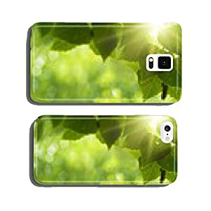 Early morning in the forest, eco banner cell phone cover case iPhone5