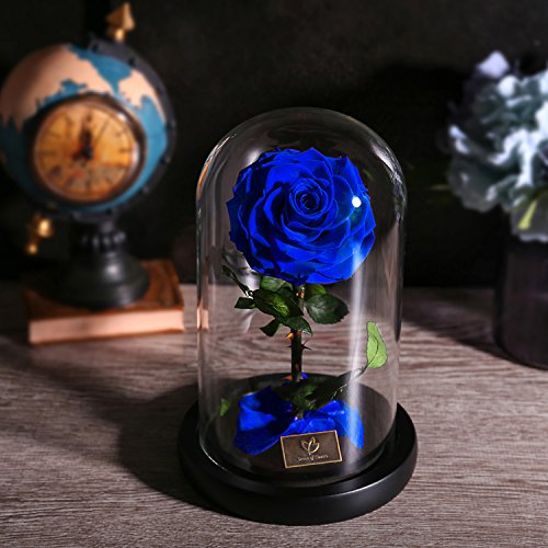 Rose Flowers, Forever Flowers, Glamorous Rose Glass, Roses in Glass Dome Wood Base, Family Holiday Party Valentine's Day Creative Gifts, Wedding Gifts, Best Gifts for Her (blue) by Dream of Flowers (Image #7)