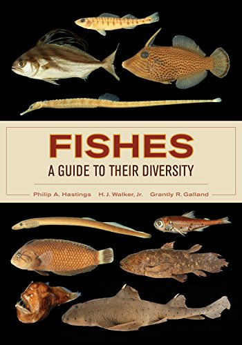 Fishes A Guide To Their Diversity 1 Philip A Hastings Amazon