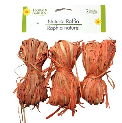 Natural Raffia 3 Bundle Pack LIght Orange Greenbrier 4336881810