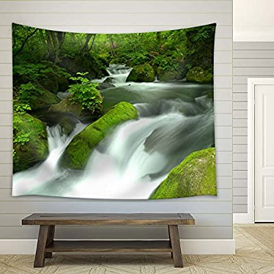 Alluring Print, Stones Covered with Moss in a Rainforest, Top Quality Design