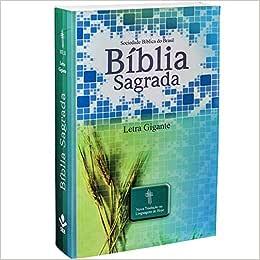 Bíblia Sagrada - Letra Gigante. Capa Ilustrada Trigo