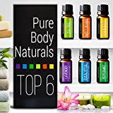 Pure Body Naturals Therapeutic Grade Top 6 Essential Aromatherapy Oils Set with Lavender/Tree/Eucalyptus/Lemongrass/Orange/Peppermint, 0.33 Fl. Oz. (6 Count)