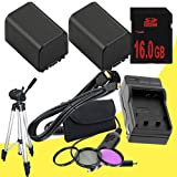 TWO NP-FV100 Lithium Ion Replacement Batteries w/Charger + 16GB SDHC Memory Card + Mini HDMI + Tripod + 3 Piece Filter Kit for Sony NEXVG10, NEXVG20 Interchangeable Lens HD Handycam Camcorder DavisMAX Accessory Bundle