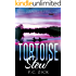 Tortoise Stew - Florida Fiction, Book 1 (Florida Fiction Series)