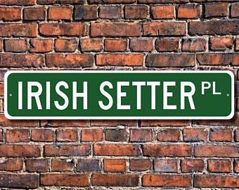 Irish Setter, Irish Setter Lover, Irish Setter Sign, Custom Street Sign, Quality Metal Sign, Dog Lover Gift, Dog Owner gift, Dog ()